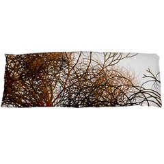 Digitally Painted Colourful Winter Branches Illustration Body Pillow Case Dakimakura (two Sides) by Nexatart