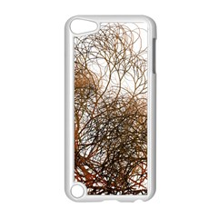 Digitally Painted Colourful Winter Branches Illustration Apple Ipod Touch 5 Case (white) by Nexatart