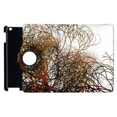 Digitally Painted Colourful Winter Branches Illustration Apple Ipad 3/4 Flip 360 Case