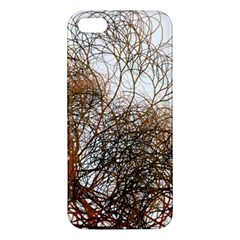 Digitally Painted Colourful Winter Branches Illustration Apple Iphone 5 Premium Hardshell Case by Nexatart