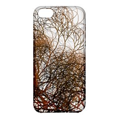 Digitally Painted Colourful Winter Branches Illustration Apple Iphone 5c Hardshell Case by Nexatart