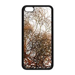 Digitally Painted Colourful Winter Branches Illustration Apple Iphone 5c Seamless Case (black) by Nexatart