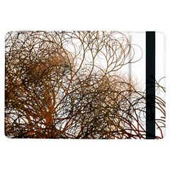 Digitally Painted Colourful Winter Branches Illustration Ipad Air Flip