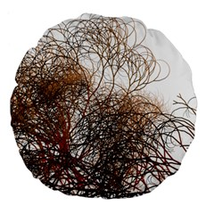 Digitally Painted Colourful Winter Branches Illustration Large 18  Premium Flano Round Cushions