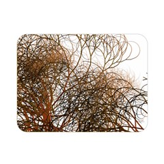 Digitally Painted Colourful Winter Branches Illustration Double Sided Flano Blanket (mini)