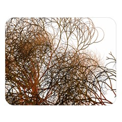 Digitally Painted Colourful Winter Branches Illustration Double Sided Flano Blanket (large)