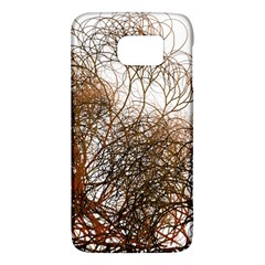 Digitally Painted Colourful Winter Branches Illustration Galaxy S6 by Nexatart
