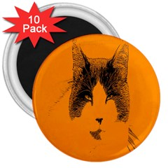 Cat Graphic Art 3  Magnets (10 Pack)  by Nexatart