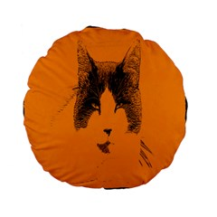 Cat Graphic Art Standard 15  Premium Flano Round Cushions