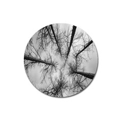 Trees Without Leaves Magnet 3  (round)