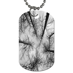 Trees Without Leaves Dog Tag (two Sides) by Nexatart