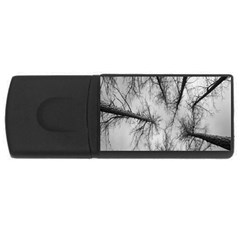 Trees Without Leaves Usb Flash Drive Rectangular (4 Gb) by Nexatart