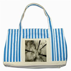 Trees Without Leaves Striped Blue Tote Bag by Nexatart