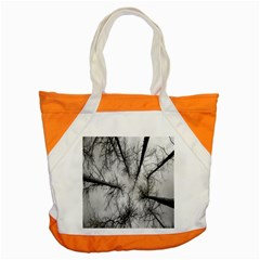 Trees Without Leaves Accent Tote Bag by Nexatart