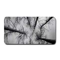 Trees Without Leaves Medium Bar Mats by Nexatart