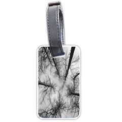 Trees Without Leaves Luggage Tags (one Side)  by Nexatart