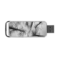 Trees Without Leaves Portable Usb Flash (two Sides) by Nexatart