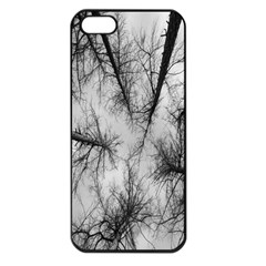Trees Without Leaves Apple Iphone 5 Seamless Case (black) by Nexatart