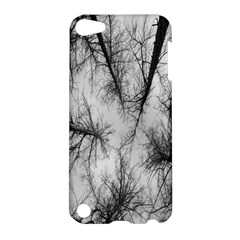 Trees Without Leaves Apple Ipod Touch 5 Hardshell Case by Nexatart