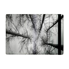 Trees Without Leaves Apple Ipad Mini Flip Case by Nexatart