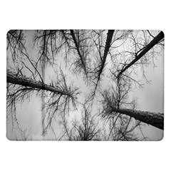 Trees Without Leaves Samsung Galaxy Tab 10 1  P7500 Flip Case by Nexatart