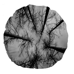 Trees Without Leaves Large 18  Premium Flano Round Cushions by Nexatart