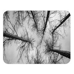 Trees Without Leaves Double Sided Flano Blanket (large)  by Nexatart