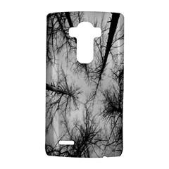 Trees Without Leaves Lg G4 Hardshell Case by Nexatart