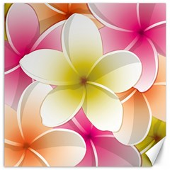 Frangipani Flower Floral White Pink Yellow Canvas 16  X 16   by Mariart