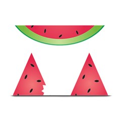 Watermelon Slice Red Green Fruite Plate Mats by Mariart