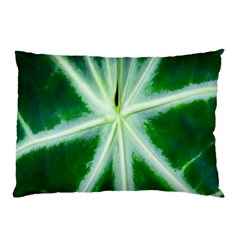 Green Leaf Macro Detail Pillow Case (two Sides) by Nexatart