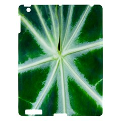 Green Leaf Macro Detail Apple Ipad 3/4 Hardshell Case by Nexatart
