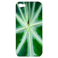 Green Leaf Macro Detail Apple Iphone 5 Hardshell Case