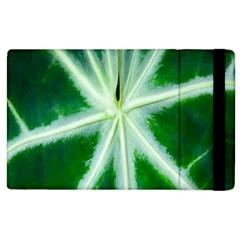Green Leaf Macro Detail Apple Ipad 3/4 Flip Case by Nexatart