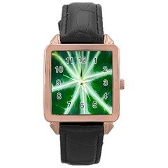 Green Leaf Macro Detail Rose Gold Leather Watch  by Nexatart