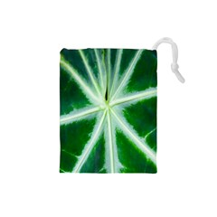 Green Leaf Macro Detail Drawstring Pouches (small)
