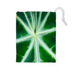 Green Leaf Macro Detail Drawstring Pouches (large)