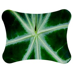Green Leaf Macro Detail Jigsaw Puzzle Photo Stand (bow) by Nexatart
