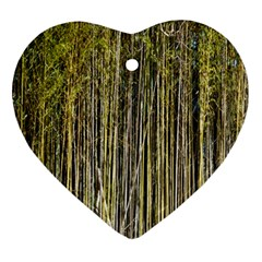 Bamboo Trees Background Ornament (heart)