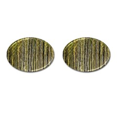 Bamboo Trees Background Cufflinks (oval) by Nexatart