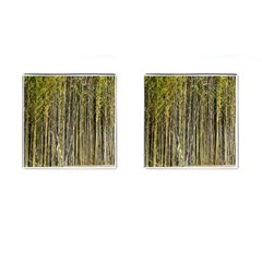 Bamboo Trees Background Cufflinks (square) by Nexatart