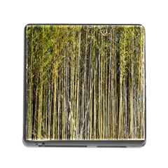 Bamboo Trees Background Memory Card Reader (square)
