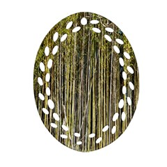 Bamboo Trees Background Oval Filigree Ornament (two Sides) by Nexatart