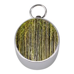 Bamboo Trees Background Mini Silver Compasses