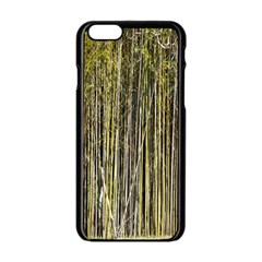 Bamboo Trees Background Apple Iphone 6/6s Black Enamel Case by Nexatart