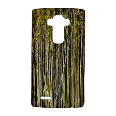 Bamboo Trees Background Lg G4 Hardshell Case by Nexatart