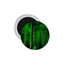 Spooky Forest With Illuminated Trees 1 75  Magnets by Nexatart