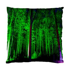 Spooky Forest With Illuminated Trees Standard Cushion Case (one Side)