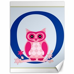 Alphabet Letter O With Owl Illustration Ideal For Teaching Kids Canvas 36  X 48   by Nexatart