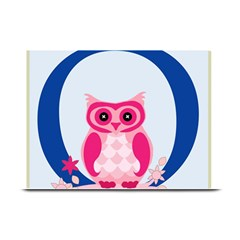 Alphabet Letter O With Owl Illustration Ideal For Teaching Kids Plate Mats by Nexatart